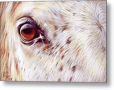 White Horse Close-up Metal Print by Elena Kolotusha