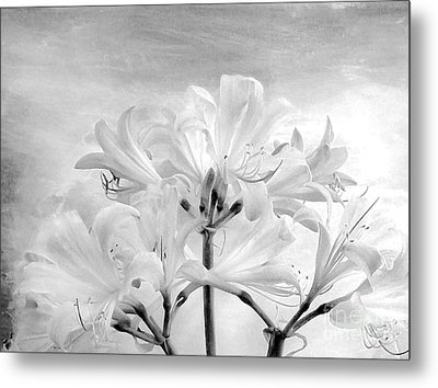 White Lillies Metal Print by Marsha Heiken