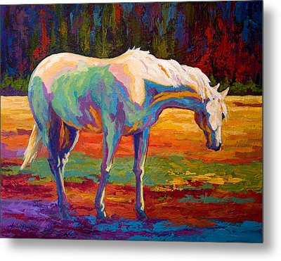 White Mare II Metal Print by Marion Rose