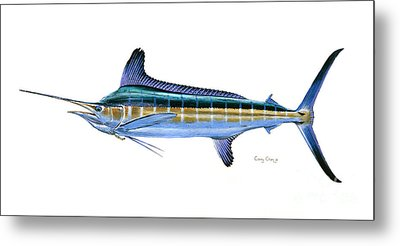 White Marlin Metal Print
