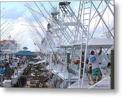 White Marlin Open Docks Metal Print by Carey Chen