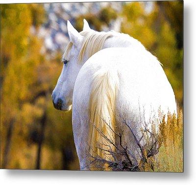 White Mustang Mare Metal Print