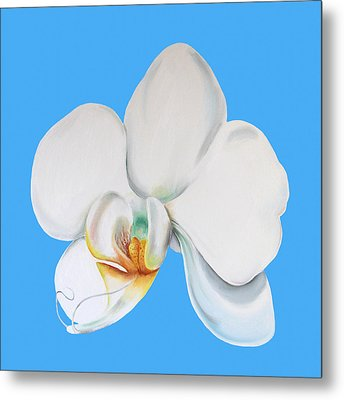 Metal Print featuring the painting White Orchid by Elizabeth Lock