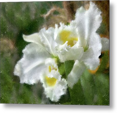 White Orchid Metal Print by John Hix