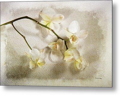 White Orchid Metal Print by Randi Grace Nilsberg