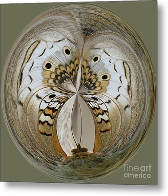 White Peacock Butterfly Orb Metal Print