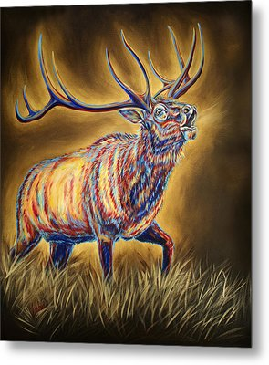 White Pine Sanctuary Bull Metal Print