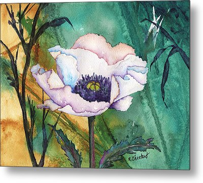 White Poppy On Teal Metal Print by Renee Chastant