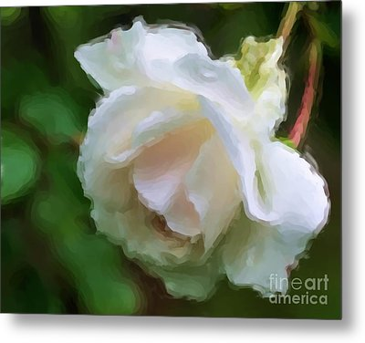 Metal Print featuring the painting White Rose In Paint by Smilin Eyes  Treasures