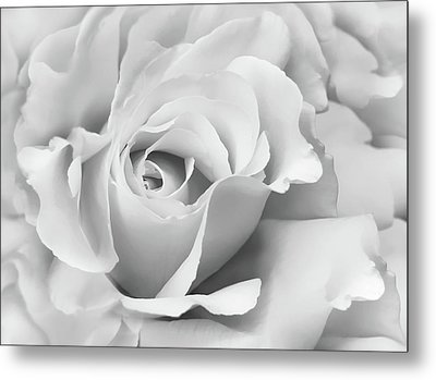 Metal Print featuring the photograph White Rose Ruffles Monochrome by Jennie Marie Schell