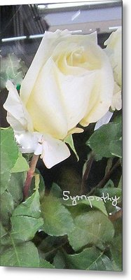 White Rose - Sympathy Card Metal Print