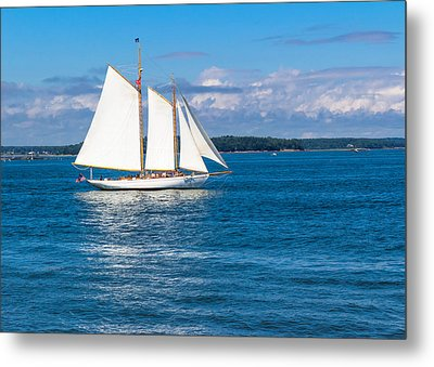 White Sails Metal Print by Laurie Breton