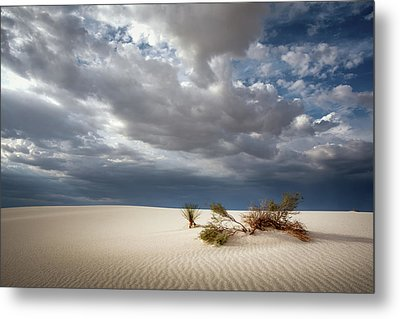 White Sands Metal Print by James Barber