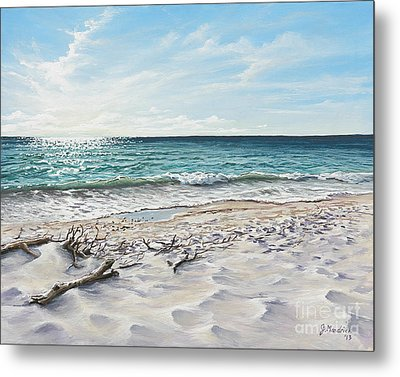 White Sands Of Tiger Tail Metal Print by Joe Mandrick