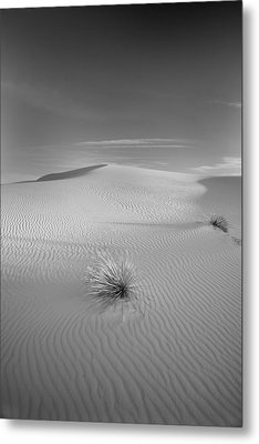 White Sands Metal Print by Peter Tellone