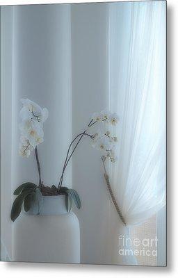 White Series Soft Metal Print by Joyce Hutchinson
