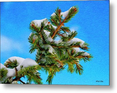 White Snow On Evergreen Metal Print