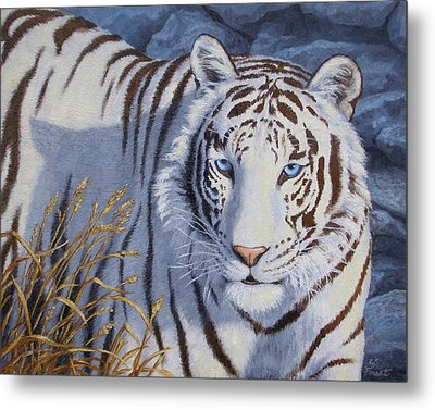 White Tiger - Crystal Eyes Metal Print by Crista Forest