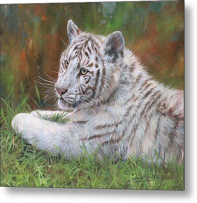 Metal Print featuring the painting White Tiger Cub 2 by David Stribbling