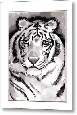 White Tiger Metal Print by Terry Groehler