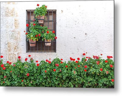 White Wall And Red Flowers Metal Print by Jess Kraft