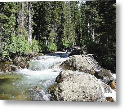 White Water Metal Print by Judyann Matthews