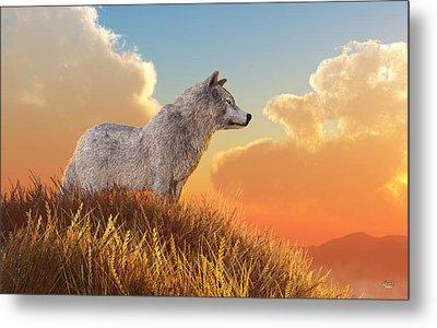 White Wolf Metal Print by Daniel Eskridge