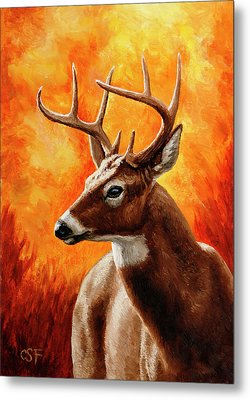 Whitetail Buck Portrait Metal Print by Crista Forest