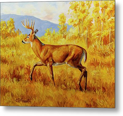 Whitetail Deer In Aspen Woods Metal Print by Crista Forest