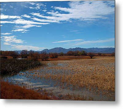 Metal Print featuring the photograph Whitewater Draw by James Peterson