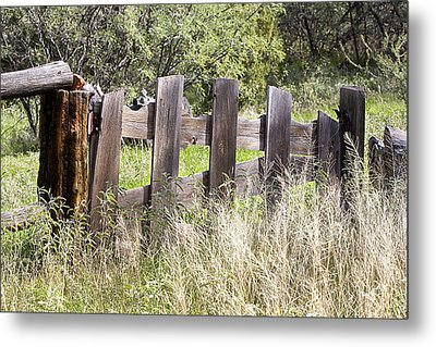 Metal Print featuring the photograph Who Ate The Fence by Phyllis Denton