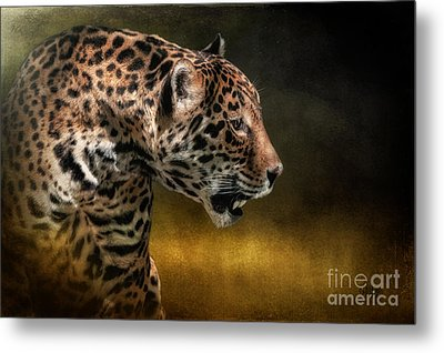 Who Goes There Metal Print by Lois Bryan