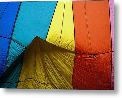 Who Landed This Balloon On Me Metal Print by Mike  Dawson