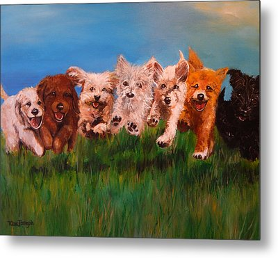 Who Let The Dogs Out Metal Print by Terry Cox Joseph