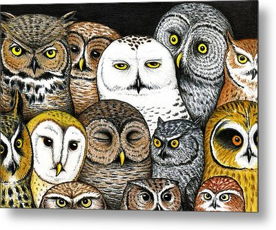 Who's Hoo Metal Print by Don McMahon