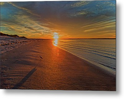Why The Long Shadow Metal Print by Betsy Knapp