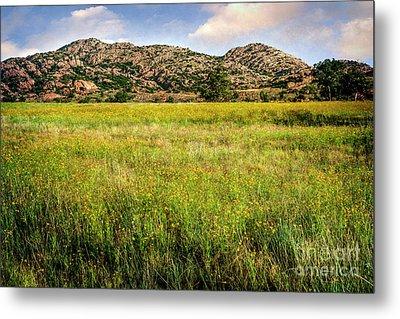 Wichita Mountain Wildflowers Metal Print by Tamyra Ayles