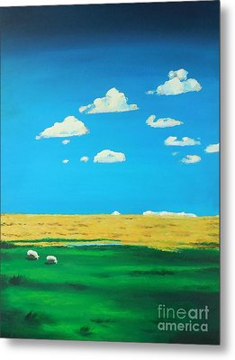 Wide Open Spaces And A Big Blue Sky Metal Print