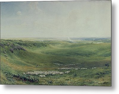 Wide Pastures Metal Print by Thomas Collier