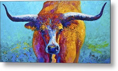 Widespread - Texas Longhorn Metal Print by Marion Rose