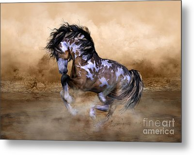 Wild And Free Horse Art Metal Print