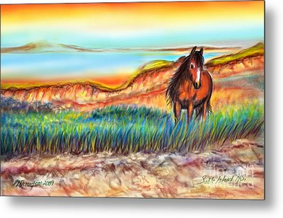 Metal Print featuring the painting Wild And Free Sable Island Horse by Patricia L Davidson
