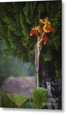 Wild Flower  ... Metal Print by Chuck Caramella