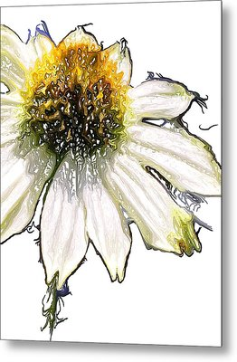 Metal Print featuring the photograph Wild Flower Five  by Heidi Smith