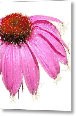 Metal Print featuring the photograph Wild Flower One  by Heidi Smith