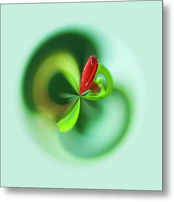 Metal Print featuring the photograph Wild Flower Orb by Bill Barber