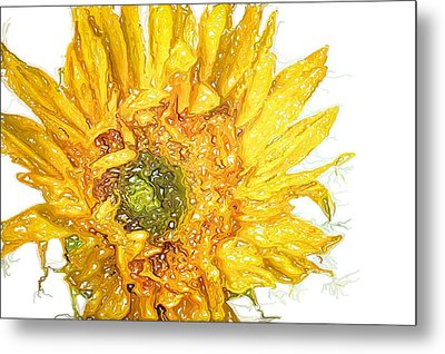Metal Print featuring the photograph  Wild Flower Two  by Heidi Smith