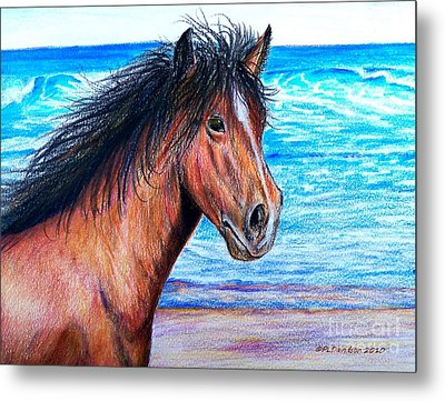 Wild Horse On The Beach Metal Print by Patricia L Davidson