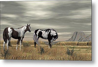 Wild Horses Metal Print by Walter Colvin