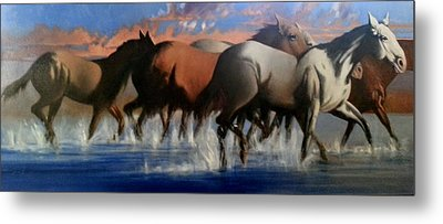 Wild Mustangs Of The Verder River Metal Print